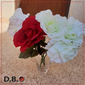 השכרת ציוד להצעת נישואים - DBO